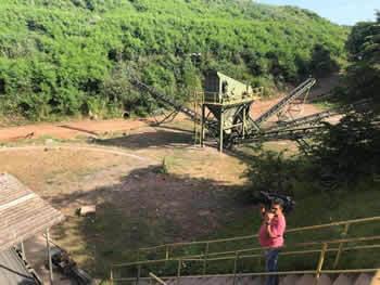 Reflorestamento em Campinas