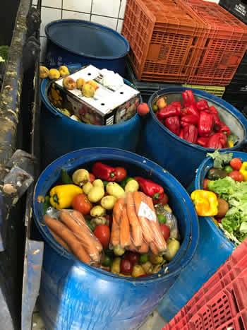 Transporte de Lixo em Campinas